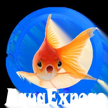 AquaExpose