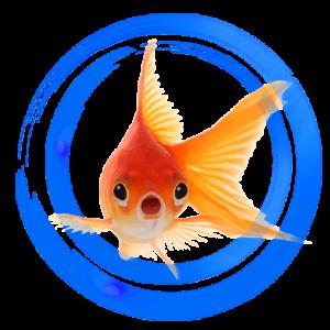 Aquaexpose Reviews